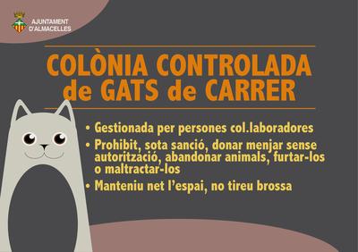 Colònia controlada  de gats de carrer
